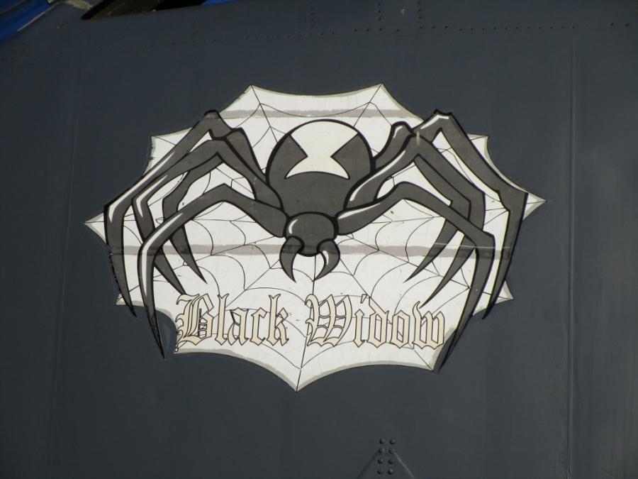 USAF Boeing B-52H Black Widow USAF Aviation Nation 2014 Nellis AFB
